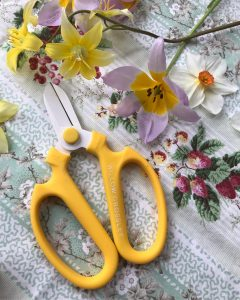 Collaboration Shears with Willow